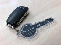 Key Shaped Key Rings with keys
