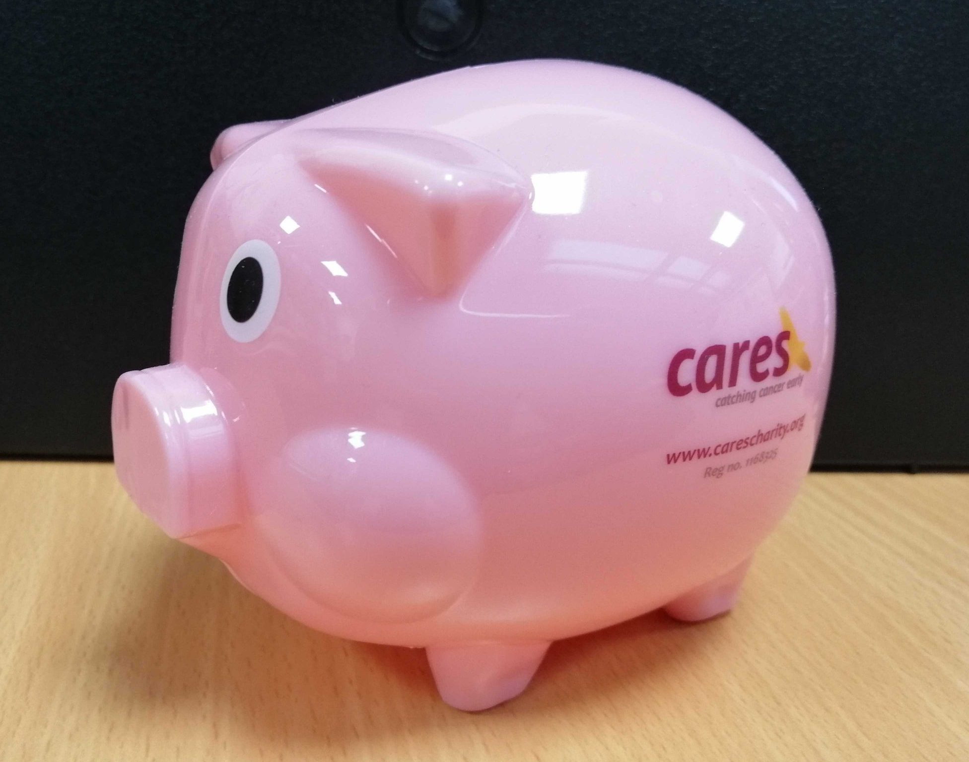 CARES Charity Piggy Bank